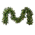 Vickerman 9-Foot x 14-Inch Cashmere Pine Garland with Clear lights