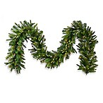 Vickerman 9-Foot x 14-Inch LED Cashmere Pine Garland