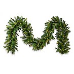 Vickerman 6-Foot x 14-Inch White LED Light Cashmere Pine Garland
