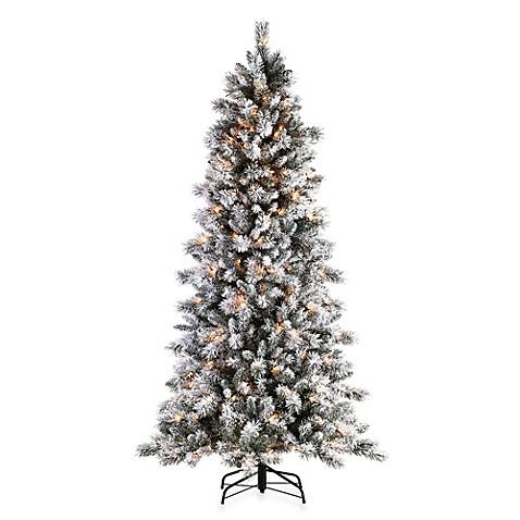 Nearest Christmas Tree Farm