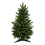 24-Inch Frasier Fir Tree with Clear Dura-Lit Lights