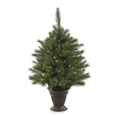 Vickerman 3-1/2-Foot Pre-Lit Cashmere Pine Tree with Battery Operated Timer