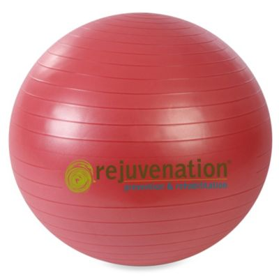 Rejuvenation™ 55-Centimeter Complete Support and Stability Ball