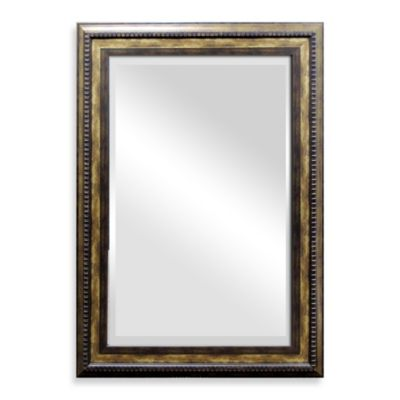 Lyon Mirror in Antiqued Bronze
