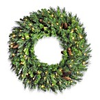 Vickerman 48-Inch Clear Light Cheyenne Pine Wreath