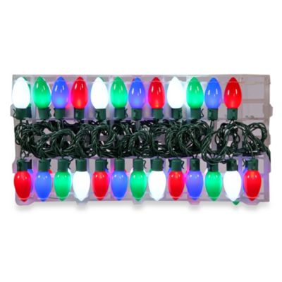 Vickerman 24-Inch Multicolor 16 Function LED Light Set