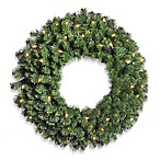 Vickerman 30-Inch Douglas Fir Wreath with Clear Lights