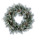 Vickerman 30-Inch Scotch Pine Wreath with Clear Lights
