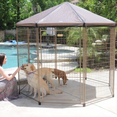 "The Advantek ""Pavilion"" Pet Gazebo"