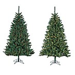 7-Foot x 50-Inch Fairmont Pine Tree Pre-Lit with 500 Lights