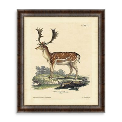 Vintage Deer Framed Art 1