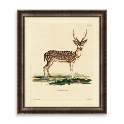 Vintage Deer Framed Art 2