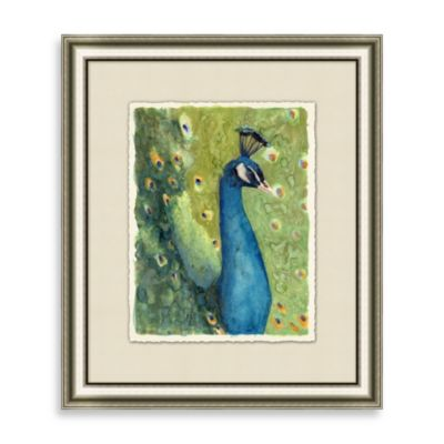 Peacock 1 Framed Art