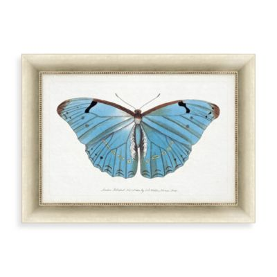 """Blue Butterfly"" Framed Art 2"