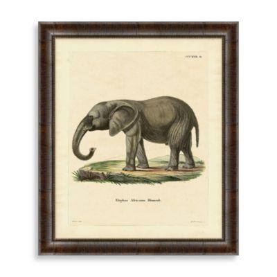 """""""Elephant"""" Framed Art 1"""