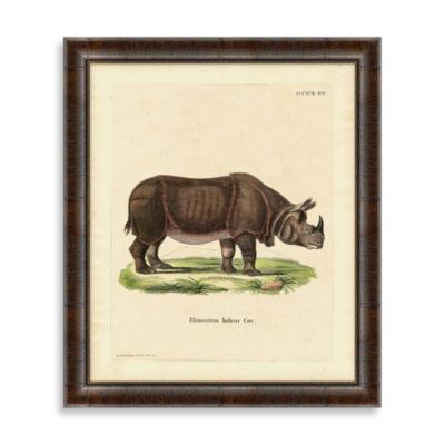 Rhino 1 Framed Art