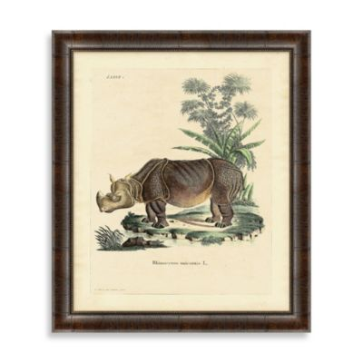 Rhino 2 Framed Art