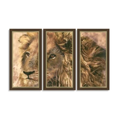 Lion Triptych Framed Art