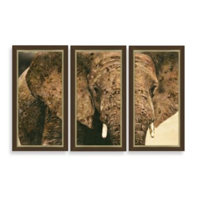 """Elephant Triptych"" 3-Piece Framed Art"