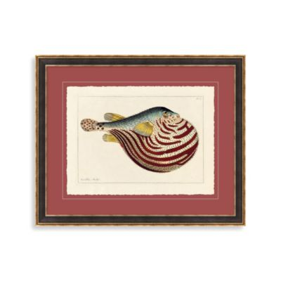 Vintage Puffer Fish 1 Framed Art
