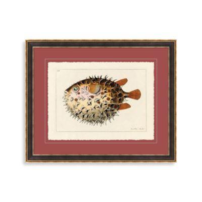 Vintage Puffer Fish 2 Framed Art