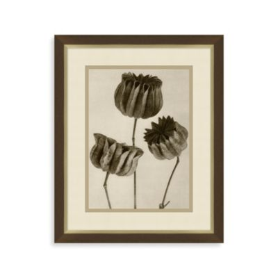 Vintage Flower 1 Framed Art