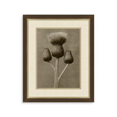 Vintage Flower 2 Framed Art