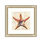 Watercolor Starfish Framed Art