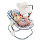 Fisher-Price® Newborn-to-Toddler Apptivity Seat