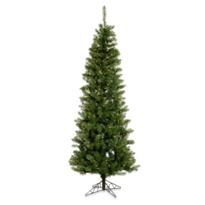 Vickerman 5.5-Foot Salem Pencil Pine Tree with White LED Lights