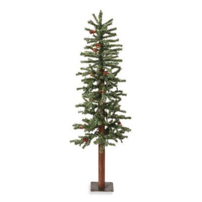 Vickerman 5-Foot Frosted Alpine Tree with Clear Lights