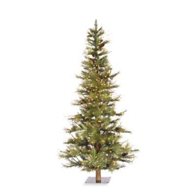 Vickerman 6-Foot Ashland Fir Tree with Clear Lights