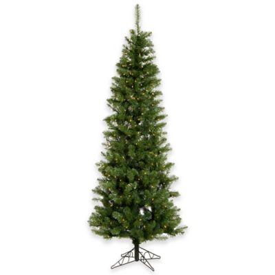 Vickerman 7.5-Foot Salem Pencil Pine Tree with Clear Lights