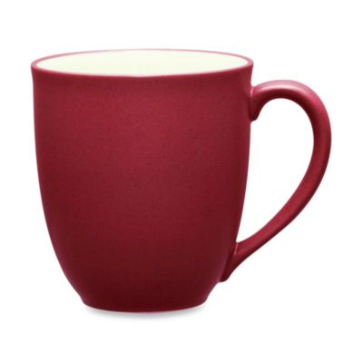 Noritake® Colorwave 12-Ounce Mug in Raspberry