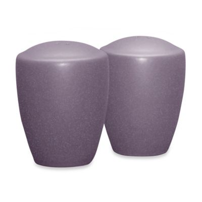 Noritake® Colorwave Salt & Pepper Shaker Set in Plum