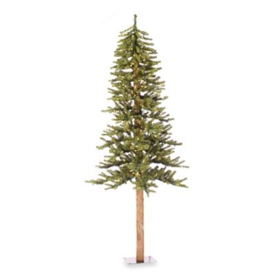 Vickerman 6-Foot 36.5-Inch Natural Alpine Tree with Clear Lights