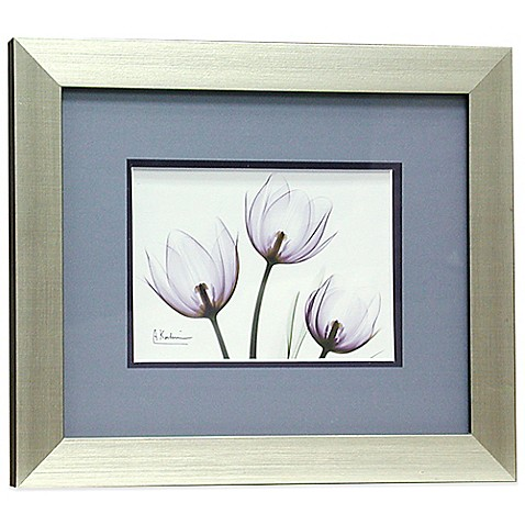 X Ray Blackberry Floral 11 Inch X 13 Inch Wall Art Bed
