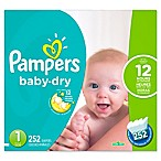 Pampers® Baby Dry™ Economy Case Size 1 252-Count Diapers
