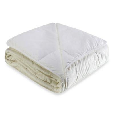 Cotton Dream All Cotton Full/Queen Blanket in Bright White