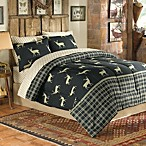 Wilder Comforter and Sheet Set