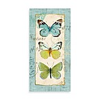 Butterfly Study I Printed Canvas Wall Art