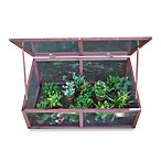 Advantek Cold Frame Greenhouse