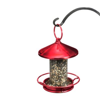 Good Directions Classic Perch Bird Feeder in Ruby