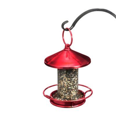 Ruby Bird Feeder