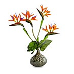 18-Inch Bird of Paradise Decorative Floral Arrangement in Green Ceramic Pot