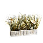 12-Inch Seashell/Mixed Grass in Rectangular Basket