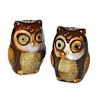 Gibson Home Natures Owl Salt & Pepper Shaker Set