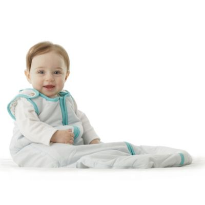 Baby Deedee® Sleep Nest® Size 0-6 Months in Dream Blue