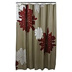 Ashley Grey Cotton 72-Inch x 72-Inch Shower Curtain