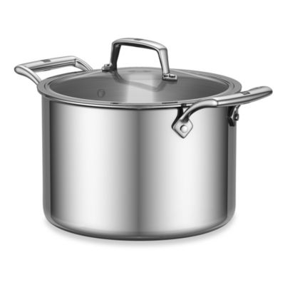 Covered Stainless Steel Pot